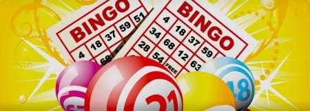 bingo_state-1