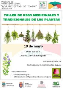 Cartel taller plantas medicinales